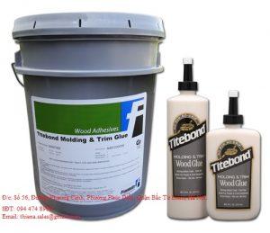 Titebond Molding & Trim Wood Glue vào mộng chốt